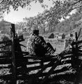 Albert Hylton crosses rail fence