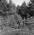 A man crosses lowered rail fence