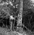 Newton Hylton holds axe to tree