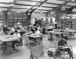 Students studying in Ellison Library, Warren Wilson College